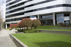 Office building front garden royalty free stock images