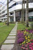 Office building front garden path Royalty Free Stock Image