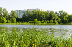 Office building in nature. The building is located in a Park near lake Stock Images