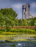 Office building. With nature in the Park Stock Photo