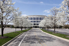 Office building in spring. Office building with blooming trees in spring Stock Image