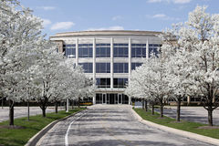 Office building in spring. Office building with blooming trees in spring Stock Photography