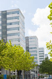 Office building towers in perspective Royalty Free Stock Image