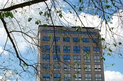 Office building with a tree and leaves during fall. Office Building with windows and a Tree Stock Photos