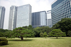 Office buildings surrounding Japanese garden Stock Photos