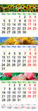 Office calendar for three months June July and August 2017 with pictures. Of sunflower and apples royalty free illustration
