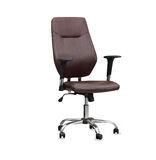 The office chair from brown leather. Isolated Stock Photography
