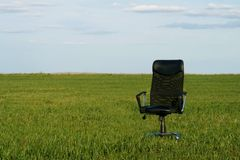 Office chair on a green grass. At sunny day royalty free stock photos