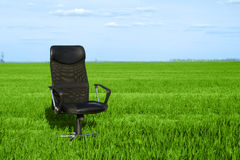 Office Chair In A Green Grass Stock Photo