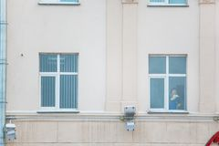 Office cleaner polishing the window inside the modern building. stock image