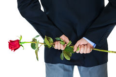 Office clerk-101. Office clerk with red rose on white background Stock Photo
