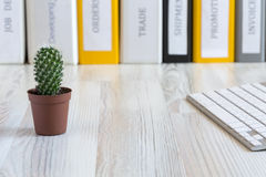 Office composition with cactus Royalty Free Stock Images