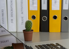 Office composition with cactus Royalty Free Stock Photos