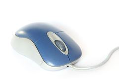 Office Computer Mouse. Studio Photo Office Computer Mouse Royalty Free Stock Images