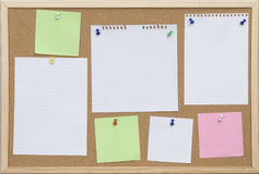 Office cork board with cards in colors Royalty Free Stock Photo