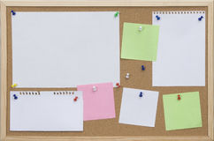 Office cork board with colored cards Royalty Free Stock Images
