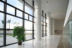 Office corridor. With big windows royalty free stock images