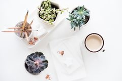 Office Desk Flat Lay With Coffe, Notepads And Succulents, Clean Stock Image