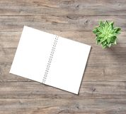Office desk flat layOpen book succulent plant wooden background royalty free stock image