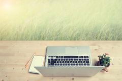 Office Desk with laptop, not paper and Euphorbia milii flower on terracotta flower pot at meadow. Stock Photo