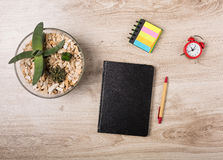 Office desk with stationary. Wooden office desk with stationary and flowerpot Royalty Free Stock Photo