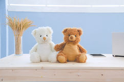 Office desk with two bear doll and Office equipment on backgroun Stock Image