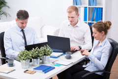 Office employees at work. Office employees are working on thier laptops in the office Stock Photo