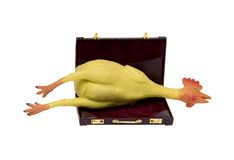 Office fun. Shown by a rubber chicken in a leather briefcase - path included Stock Photo