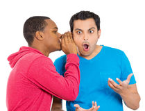 Office gossip rumors, surprised guy Stock Photos