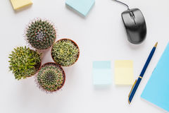 Office or home table desk, top view. Small cacti, pen, computer mouse, notebook on white background.  Flat lay Royalty Free Stock Photography