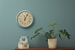 Office interior with houseplant and clock on wall