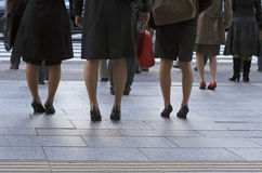 Office ladies in the town. Office ladies legs waiting to cross the street in a city Stock Image