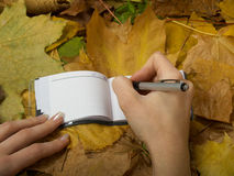 Office on leaves. Office accessories against lying autumn leaves Royalty Free Stock Photography