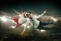 Office man as a soccer or football player at the stadium royalty free stock photos