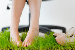 Office massage foot. Fatigue and relaxation. Office massage foot. Pain from high heels. Fatigue and relaxation. Feet on the grass Stock Images