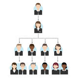Office organization chart tree Royalty Free Stock Images