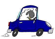 Office sheep driving car. Sheep driving car fast to work Royalty Free Stock Photos