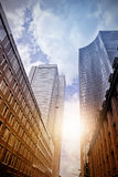 Office skyscrapers in the sun Stock Images