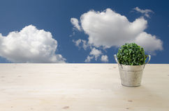 Office Table with Green tree on Basket and Cloudy sky Background Royalty Free Stock Image