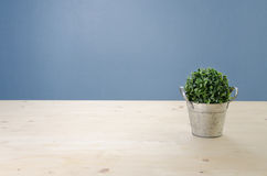 Free Office Table With Tree On Basket,  View From Front With Green Le Stock Image - 64557181