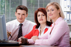 Office team Royalty Free Stock Photo