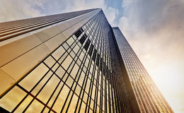 Office tower at dawn Royalty Free Stock Images