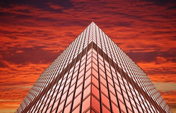 Office tower at sunset (or sunrise) Royalty Free Stock Photography