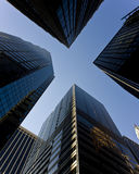 Office towers. Rising to the sky Stock Photography