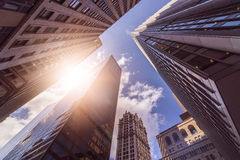 Office towers in the sun Royalty Free Stock Photo