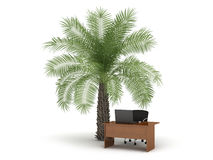 Office in the tropical land - concept illustration Stock Photography