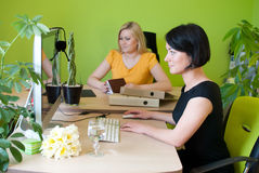 Office womans sitting work business. Office two womans sitting work desk business worker green lady Stock Image