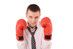 Office worker with boxing gloves. Portrait of office worker with boxing gloves royalty free stock photo