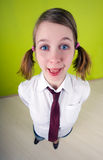 Office worker. Fish-eye lens used. Office worker. On green background royalty free stock image