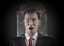 Office worker with the head inside a birdcage Royalty Free Stock Photo